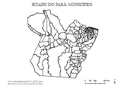 Mapa do Pará com contorno dos municípios.